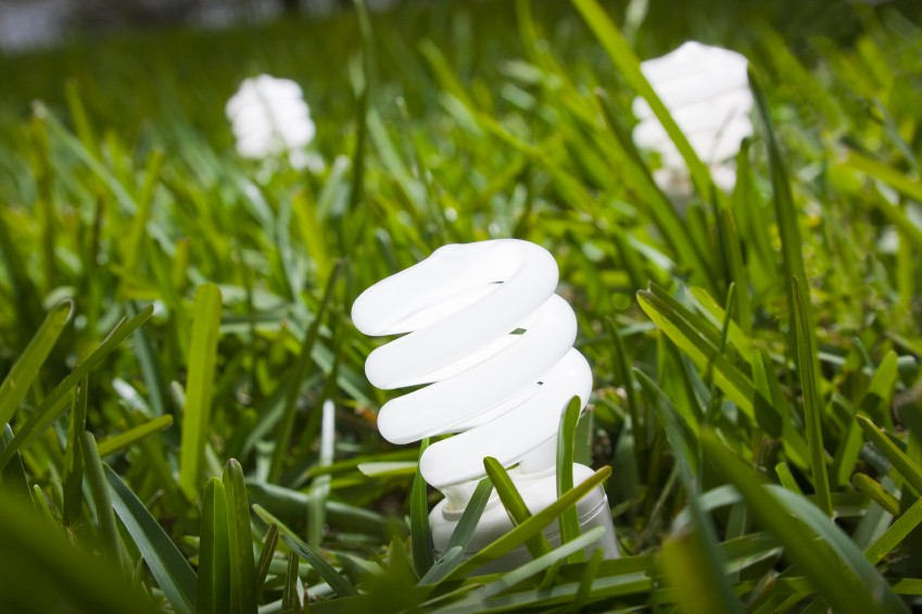 Compact Fluorescent Lightbulbs on grass