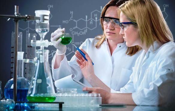 A kutatók megfejtették a fogtulajdonságok és a fogelhasználódás funkcionális biomechanikájának titkát
