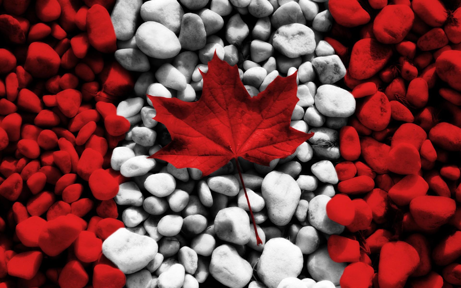 A kanadaiak is egyre inkább máshol csináltatják meg a fogaikat