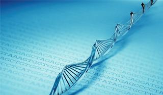 A genetikai technikák is szerephez jutnak a jövő szájápolásában