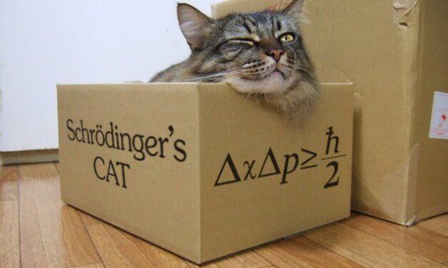 Az akut fogászati ellátás dilemmája (I. rész) – Schrödinger macskája