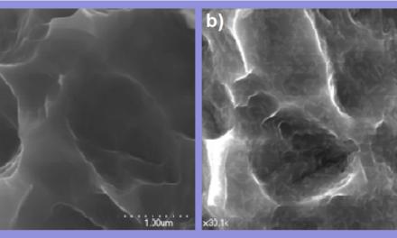 A TITÁNIMPLANTÁTUMOK OSSZEOINTEGRÁCIÓJA <br><span style='font-size:12px;'>Szegényebb csontkínálat esetén is  javul a nano-hidroxiapatit bevonattal</span>