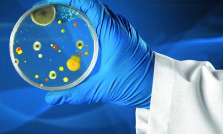 Viszlát baktériumok, viszlát antibiotikum!